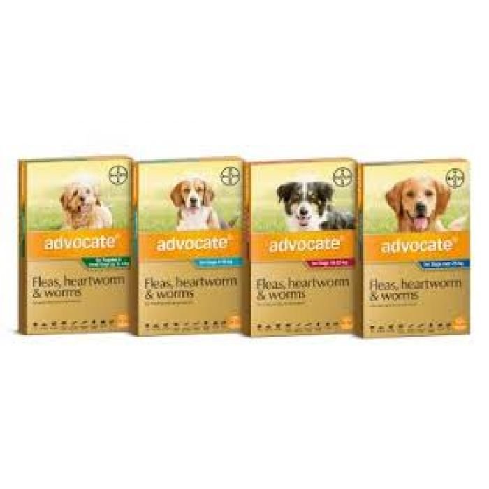 Advocate for Dogs - Effective Treatment for Fleas, Heartworm, and Intestinal worms