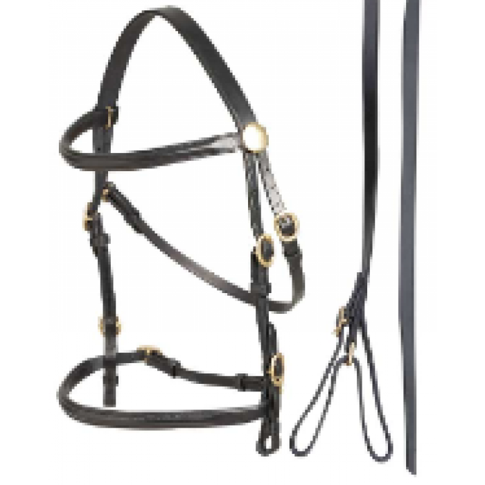 In Hand Bridle - Black