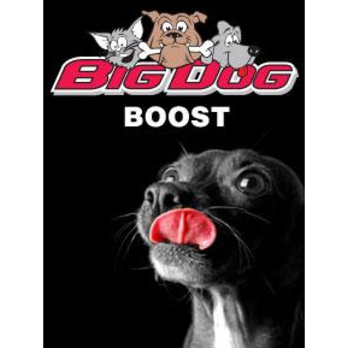 Boost, Big Dog, Big Dog Boost, Natural Immune System Booster, supplement for dogs