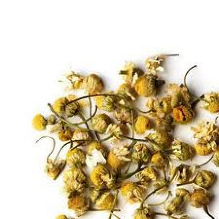 Chamomile for Horses - Country Park Herbs