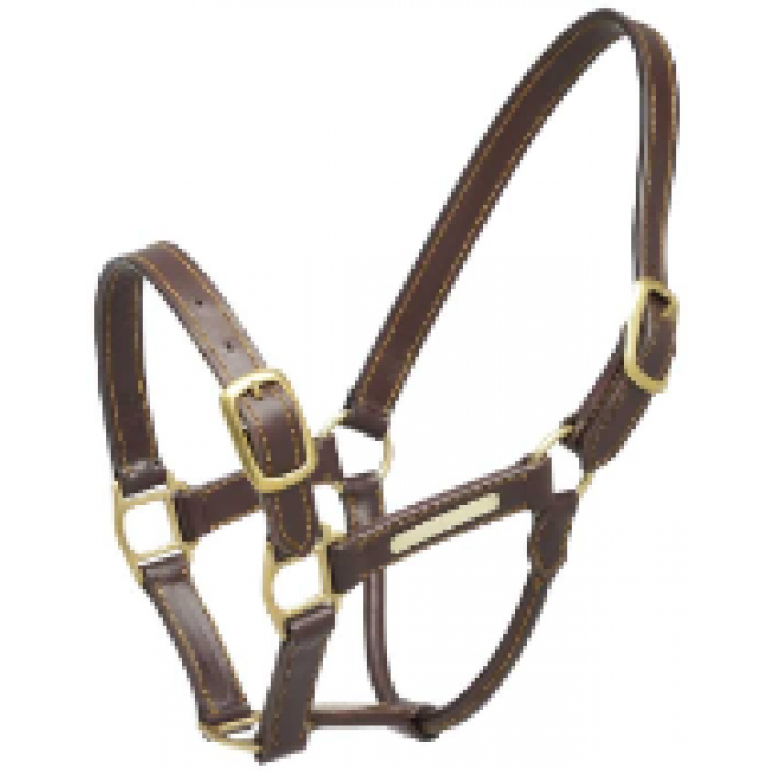Aintree Leather Halter - Full Size
