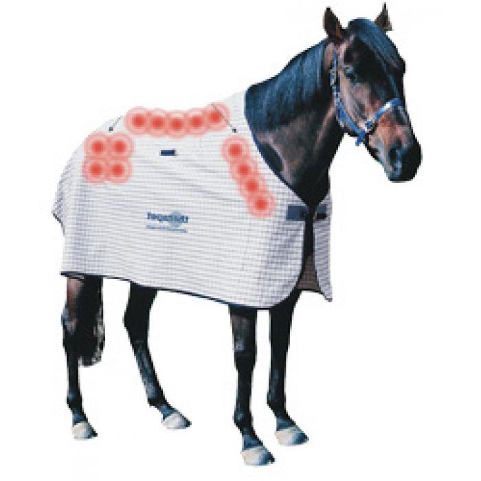 Magnetic horse rug