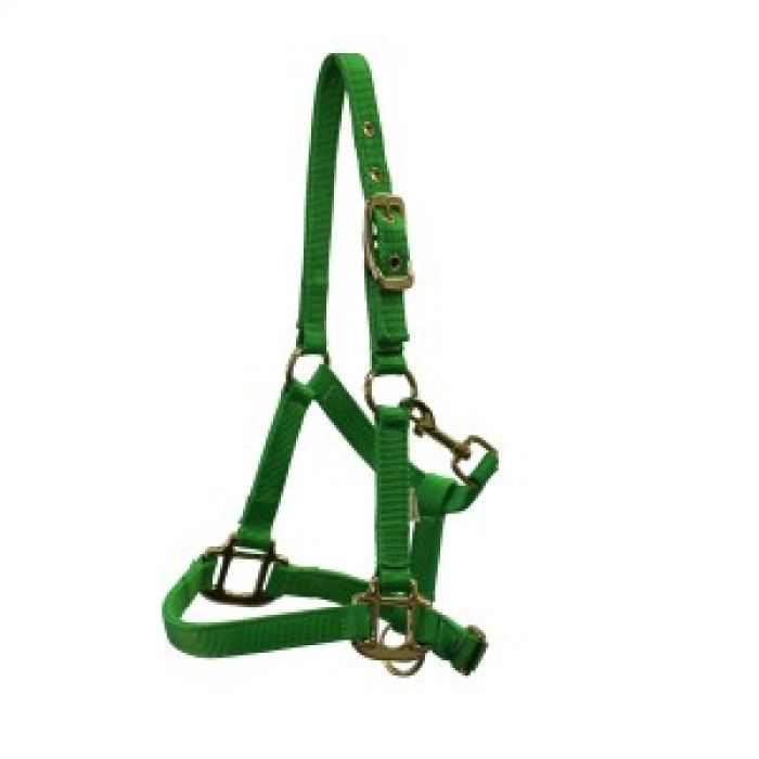 Piccolo Premium Mini Horse Halter