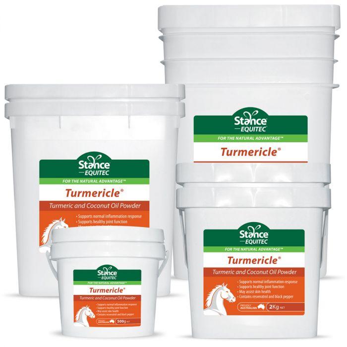 Equitec Turmericle Powder