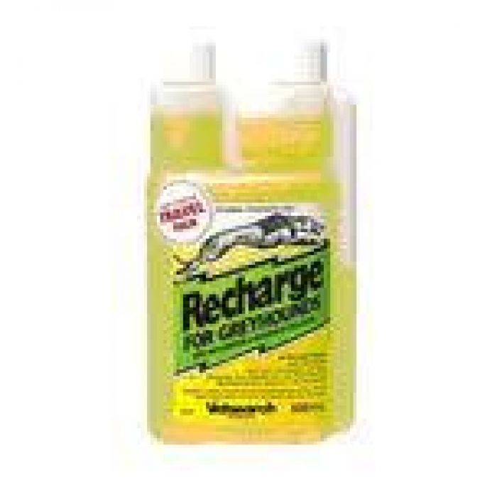 Recharge for Greyhounds - 500mL